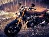 Daryls Bike